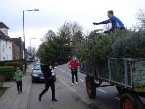 Weihnachtsbaumsammlung @ Blatzheim und Bergerhausen | Kerpen | Nordrhein-Westfalen | Deutschland
