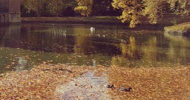 Herbst in Blatzheim – Wer hat noch Fotos?