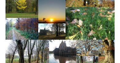 Weiterte Herbstbilder rund um Blatzheim